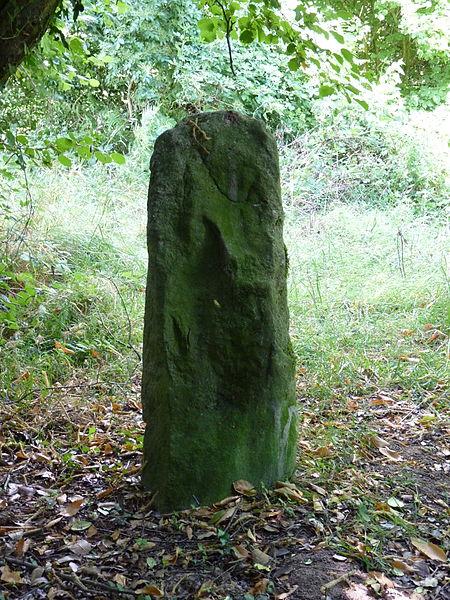 Photo du Monument Historique Deux menhirs de Kergoff situé à Boqueho