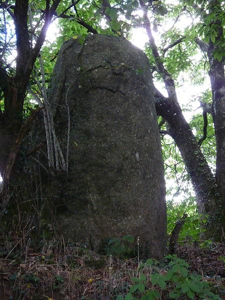 Photo du Monument Historique Menhir de Bodquelen situé à Canihuel