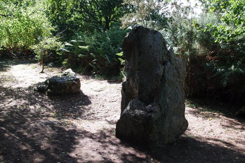 Photo du Monument Historique Site mégalithique de la Lande du Gras situé à Meslin