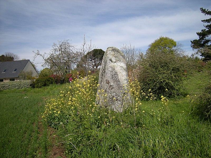 Photo du Monument Historique Menhir de Kervéniou situé à Penvénan