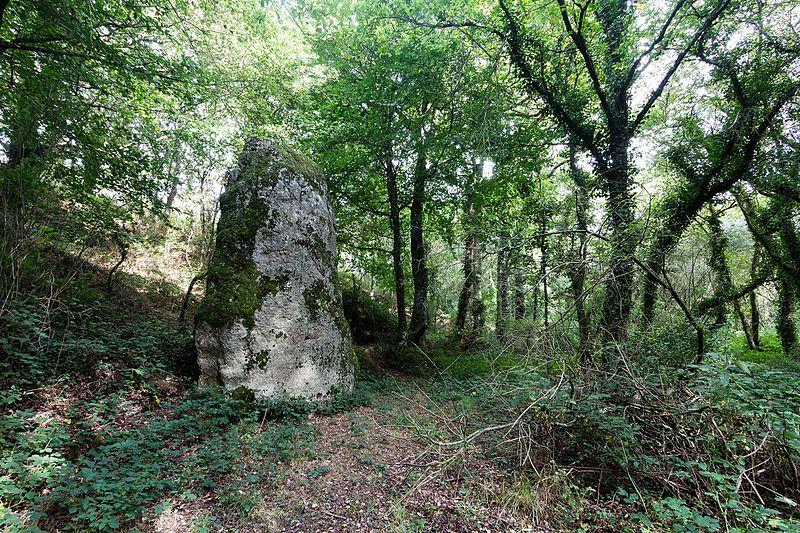 Photo du Monument Historique Menhir dit Le Fuseau situé à Plaine-Haute