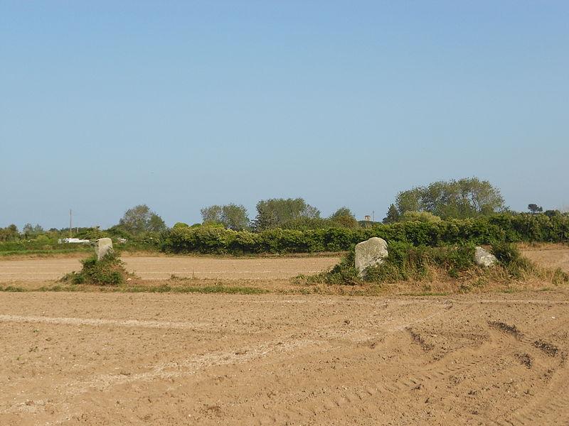 Photo du Monument Historique Alignement de menhirs situé à Pleubian