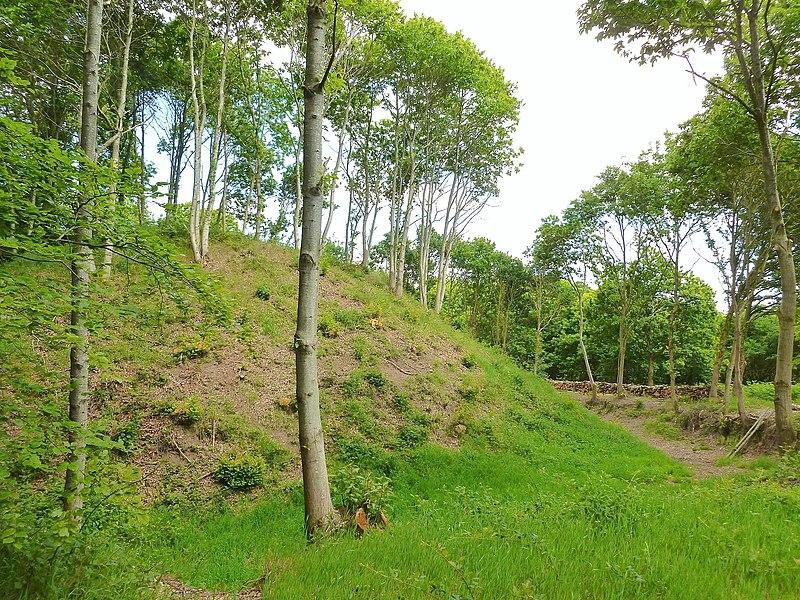 Photo du Monument Historique Mottes féodales dites Les Bourgs Heusas situé à Pléven
