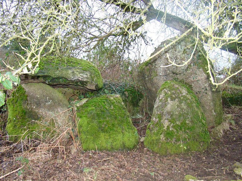 Photo du Monument Historique Allée couverte du Parc-Kerdic situé à Saint-Connan