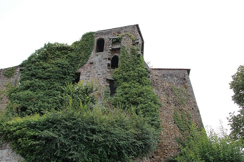 Photo du Monument Historique Ruines du château de Coëtquen situé à Saint-Hélen