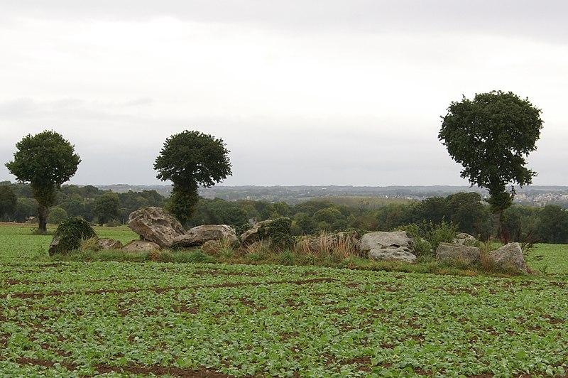Photo du Monument Historique Allée couverte de la Hautière dite Le Tombeau situé à Trégon