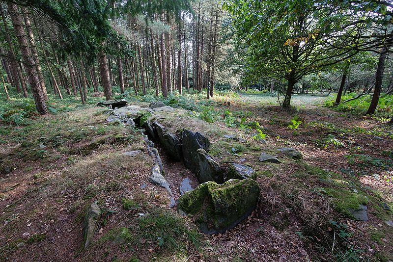 Photo du Monument Historique Sépulture mégalithique dite dolmen de Corn-er-Houët situé à Caurel
