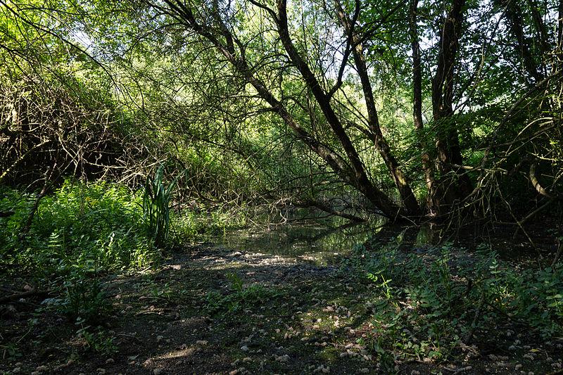 Photo du Monument Historique Site gallo-romain de l'Asile des Pêcheurs situé à Taden