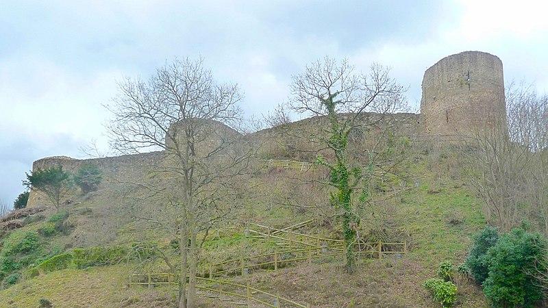 Photo du Monument Historique Ruines du château situé à Léhon