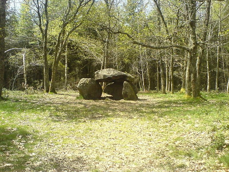 Photo du Monument Historique Dolmen dit Pierre-la-Fade situé à Blessac