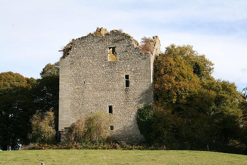 Photo du Monument Historique Restes du donjon situé à Chamborand