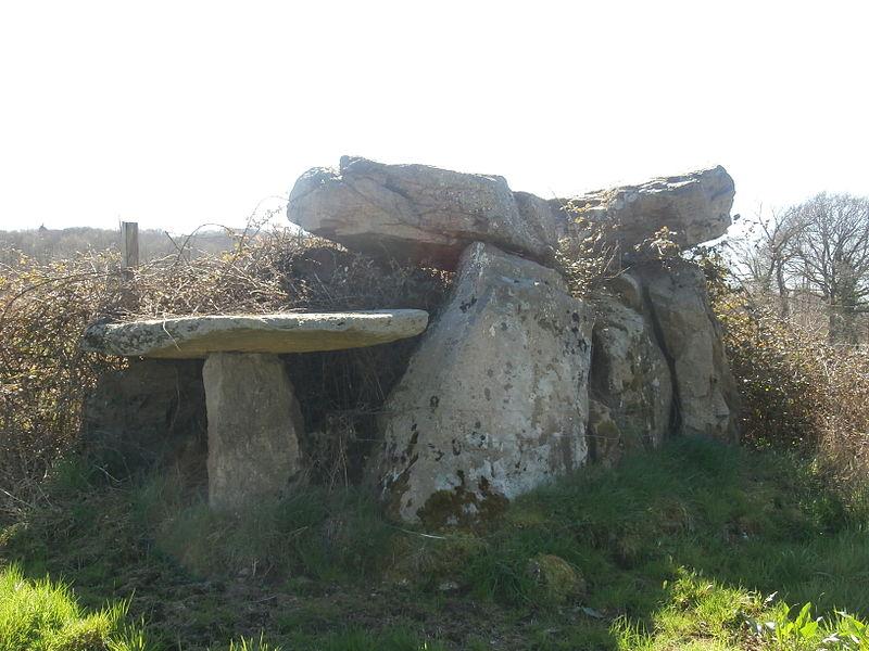 Photo du Monument Historique Dolmen dit La Pierre Cuberte (également sur commune de Dun-le-Palestel) situé à Naillat