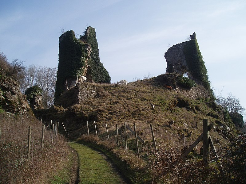 Photo du Monument Historique Vestiges du château situé à Malval