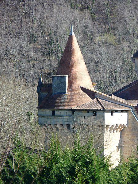 Photo du Monument Historique Château situé à Bayac