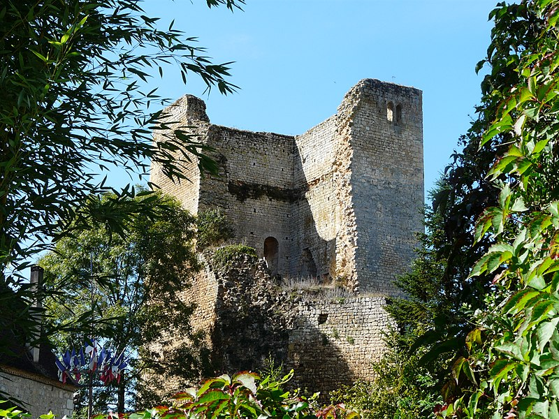 Photo du Monument Historique Château de Clérans situé à Cause-de-Clérans