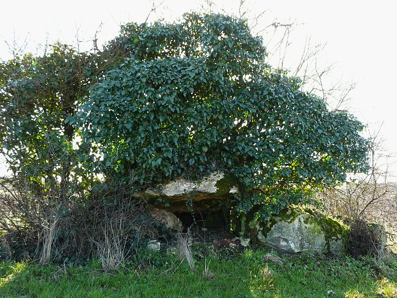 Photo du Monument Historique Dolmen d'Eylias situé à Eymet