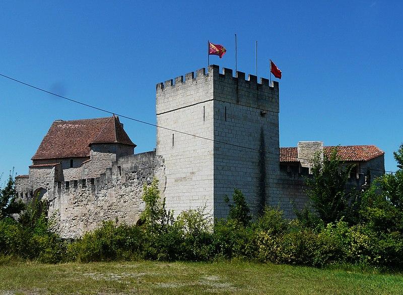 Photo du Monument Historique Château (restes) situé à Grignols