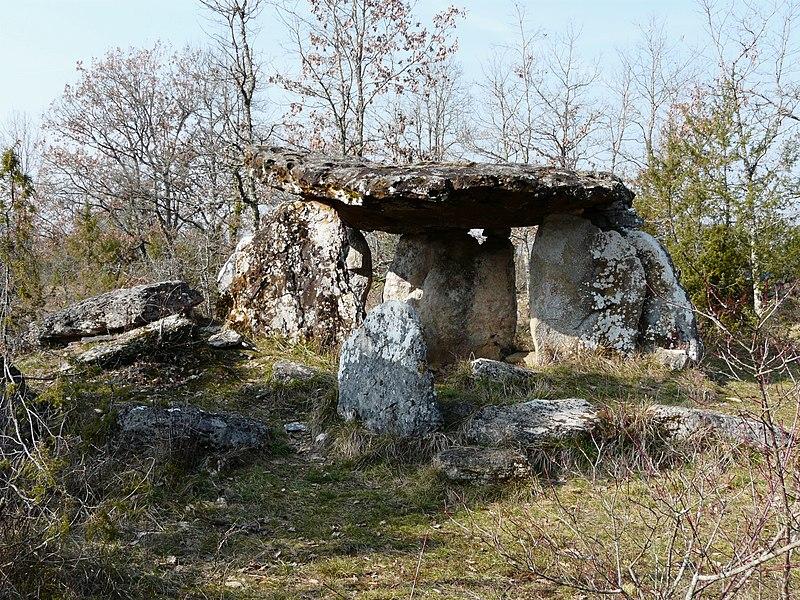 Photo du Monument Historique Dolmen de Peyrelevade situé à Paussac-et-Saint-Vivien