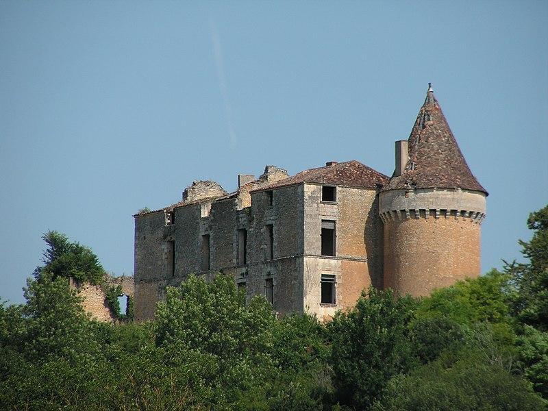 Photo du Monument Historique Ruines du château de Longas situé à Sainte-Foy-de-Longas