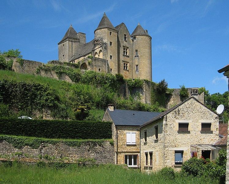 Photo du Monument Historique Château de Salignac situé à Salignac-Eyvignes