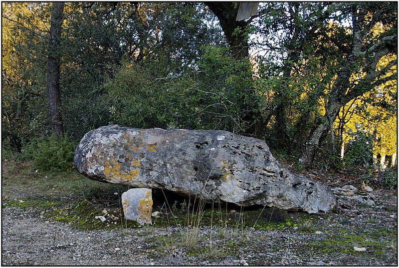 Photo du Monument Historique Dolmen de Peyrelevade situé à Vitrac