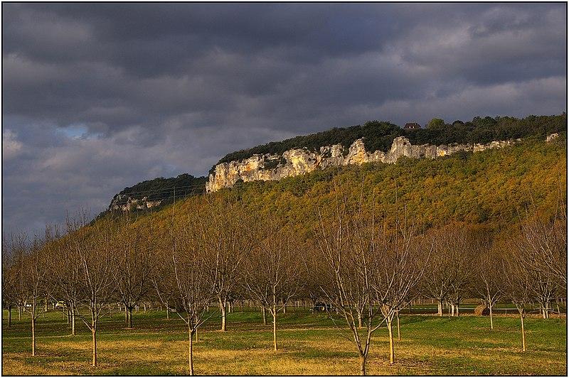 Photo du Monument Historique Falaise du Conte situé à Cénac-et-Saint-Julien