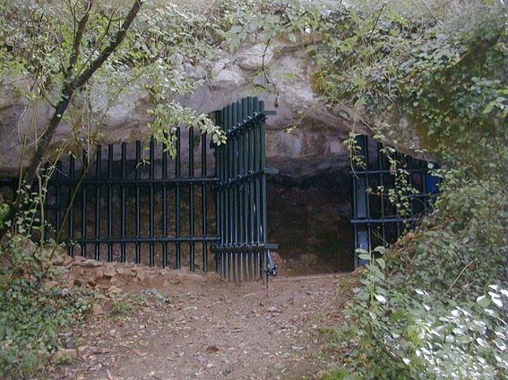 Photo du Monument Historique Grotte ornée souterraine de Cussac situé à Le Buisson-de-Cadouin