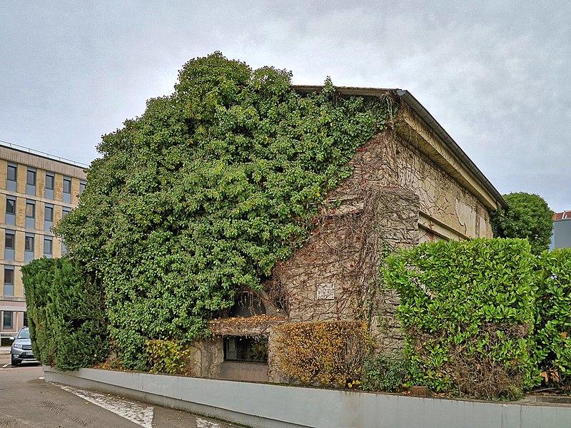 Photo du Monument Historique Chapelle capitulaire Saint-Paul (restes de l'ancienne) situé à Besançon
