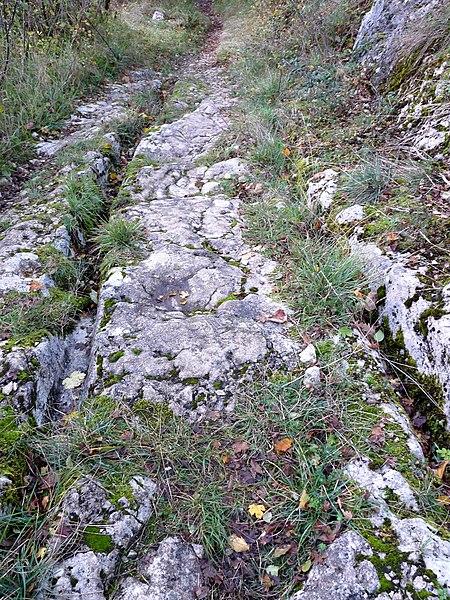 Photo du Monument Historique Voie romaine constituant le chemin communal dit du Sert situé à Beure