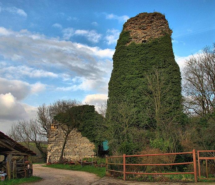 Photo du Monument Historique Château situé à Corcondray