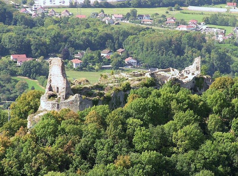 Photo du Monument Historique Château (ruines) situé à Montfaucon