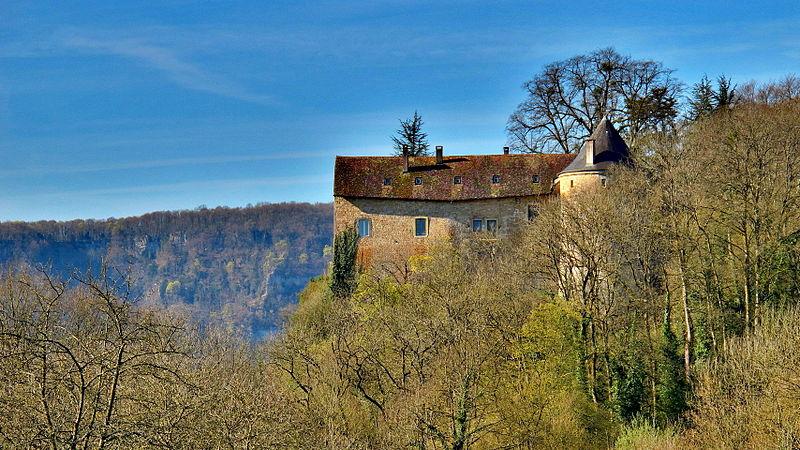 Photo du Monument Historique Château situé à Roulans