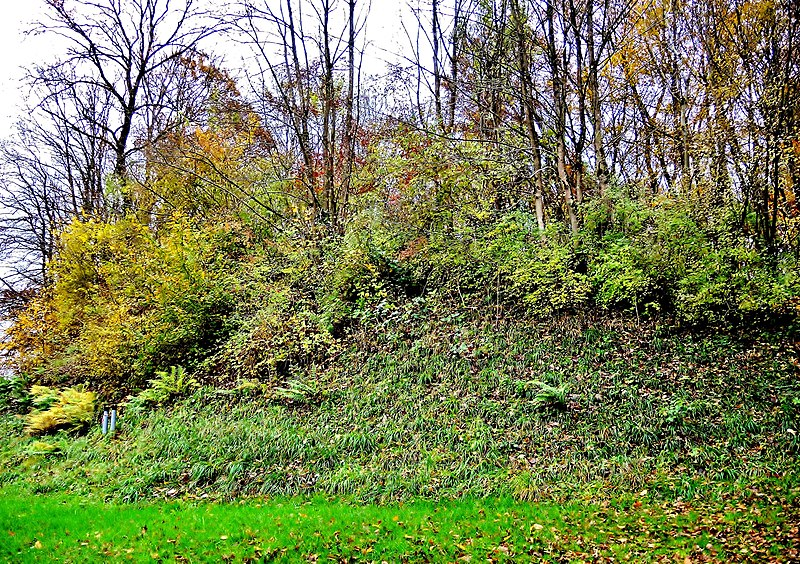 Photo du Monument Historique Habitat fortifié situé à Bart