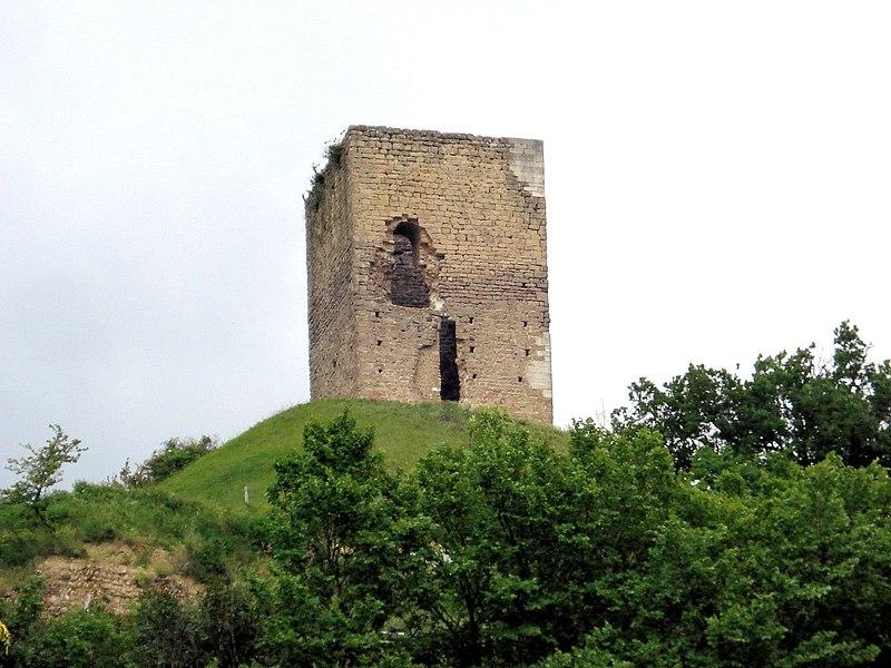 Photo du Monument Historique Site archéologique de la tour d'Albon, situé au hameau de La Tour situé à Albon