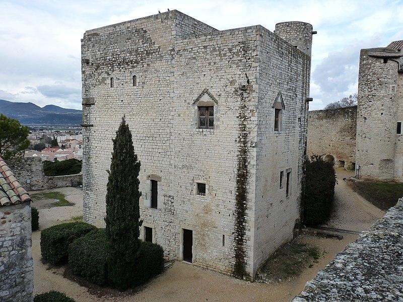 Photo du Monument Historique Château des Adhémar ou des Papes situé à Montélimar