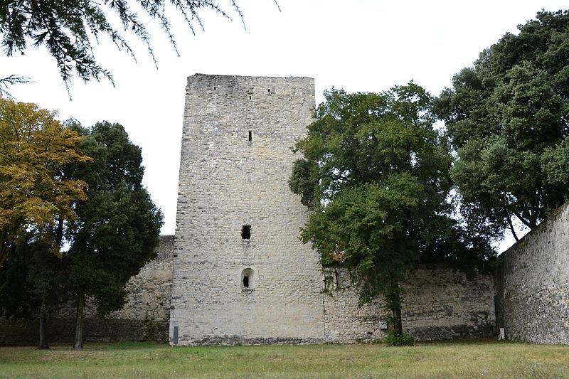 Photo du Monument Historique Tour de Narbonne situé à Montélimar
