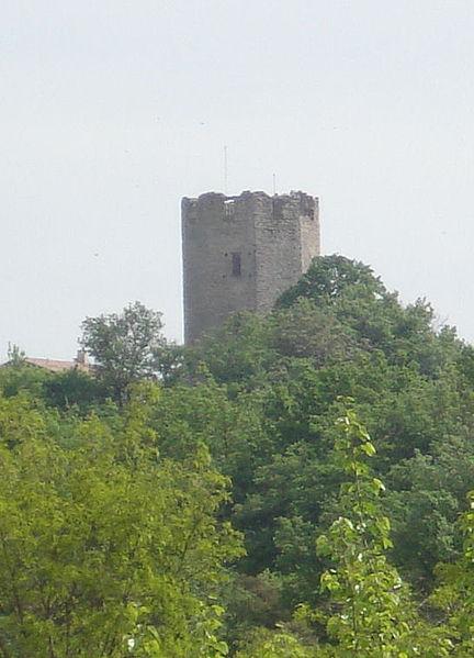 Photo du Monument Historique Tour carolingienne situé à Ratières