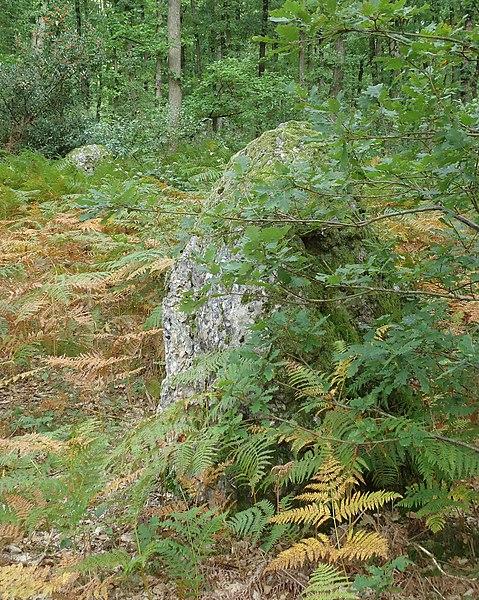 Photo du Monument Historique Alignement de trois menhirs situé à Les Baux-Sainte-Croix