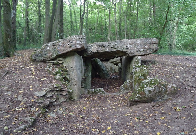 Photo du Monument Historique Allée couverte situé à Dampsmesnil