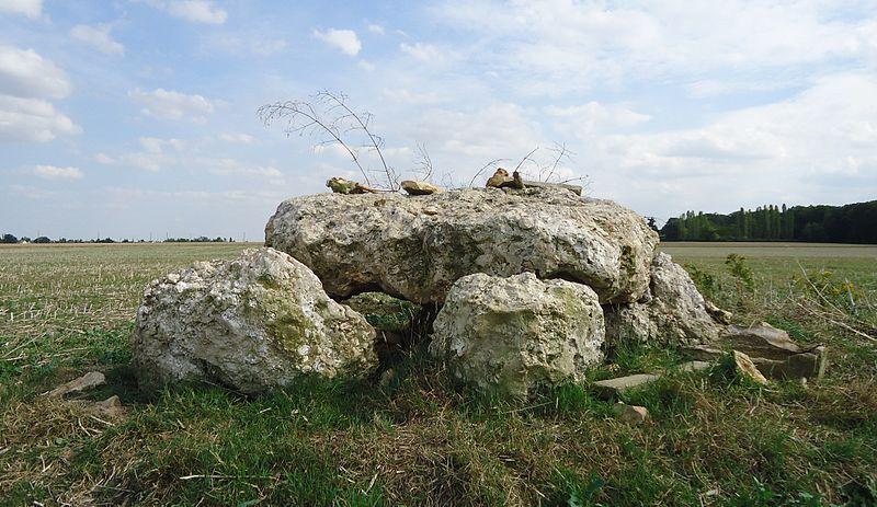 Photo du Monument Historique Dolmen de l\'Hôtel-Dieu situé à Les Ventes