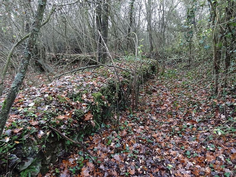 Photo du Monument Historique Fanum de Cracouville : vestiges gallo-romains situé à Le Vieil-Evreux