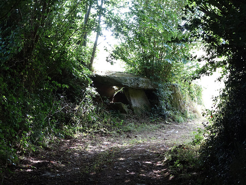 Photo du Monument Historique Allée couverte situé à Bannalec