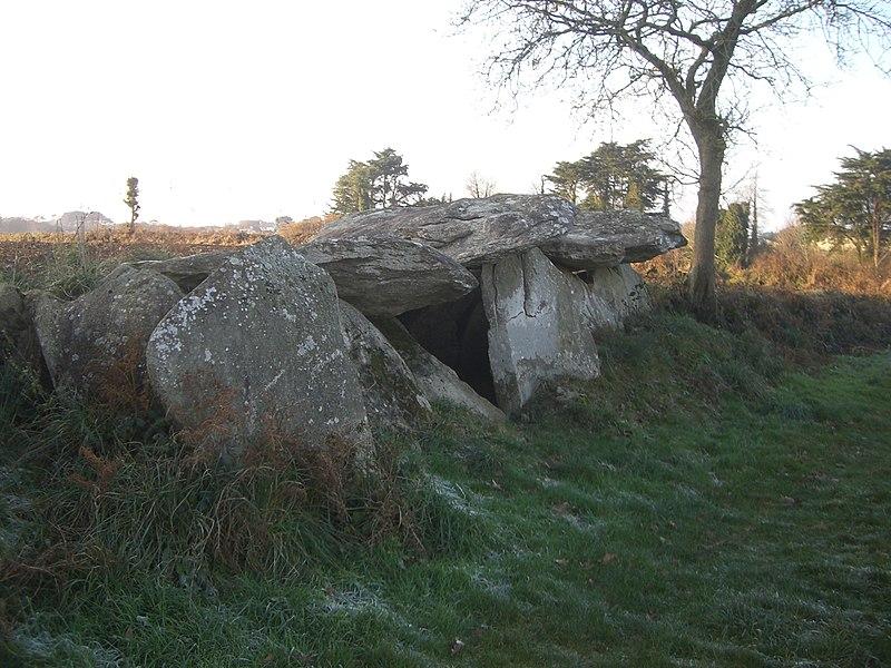 Photo du Monument Historique Allée couverte de Ty-ar-c'horriket situé à Beuzec-Cap-Sizun