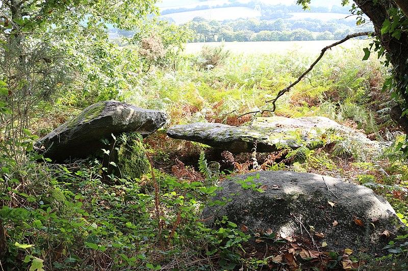 Photo du Monument Historique Cairn mégalithique avec dolmens situé à Elliant