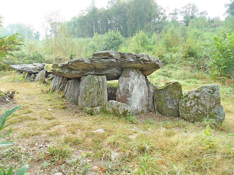 Photo du Monument Historique Allée couverte dite Loch-ar-Ronfl situé à Gouézec