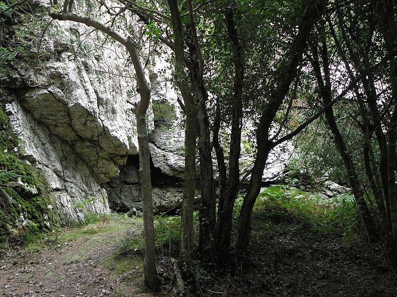 Photo du Monument Historique Grotte et rocher de Roc'h-Toul situé à Guiclan