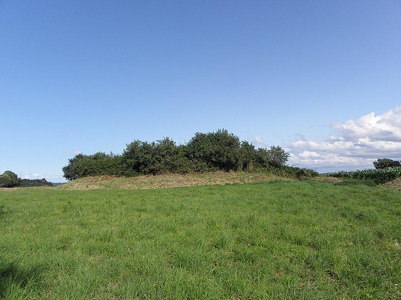 Photo du Monument Historique Tumulus dit Tossen-ar-C'honifled situé à Lanmeur