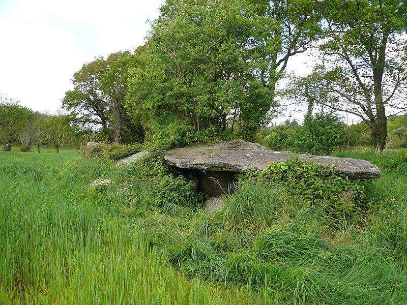 Photo du Monument Historique Allée couverte dite Ty Corriganet, de Coat Menez Guen situé à Melgven