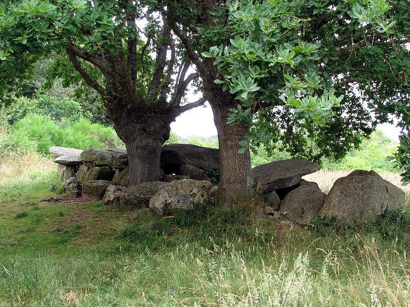 Photo du Monument Historique Allée couverte situé à Moëlan-sur-Mer