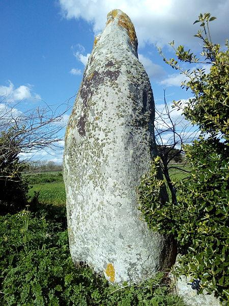Photo du Monument Historique Menhir de Lanvenael et bande de terrain autour situé à Plomeur
